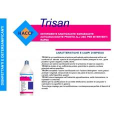 A - Detergente sanitizzante rapido